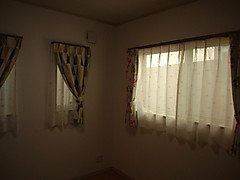 Nec_2074_800x600